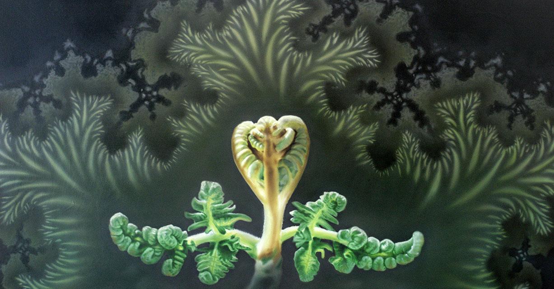 fractal_fern eric nez